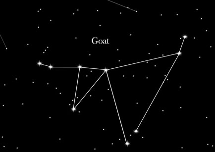 Constellation Goat