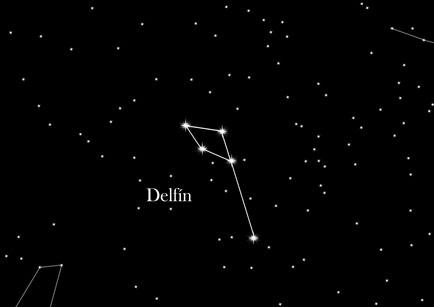 Constelación Delfín